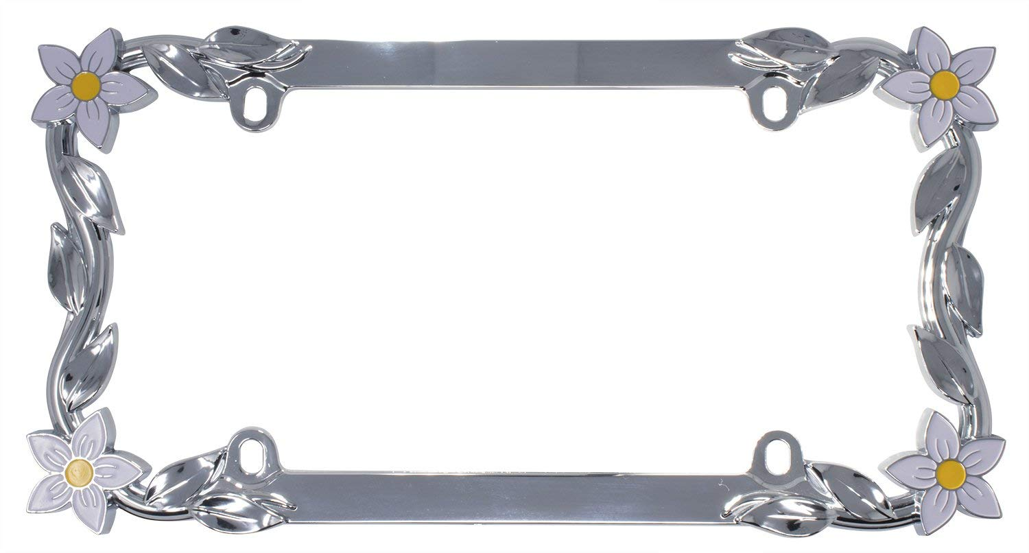 The 10 Best License Plate Frames To Buy 2019 Auto Quarterly
