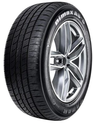 Radar Tires Dimax AS- 8 Touring Radial Tire- 205/60 R16 92v