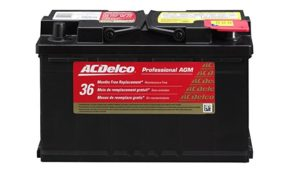 ACDelco 94RAGM Professional AGM 94R Battery