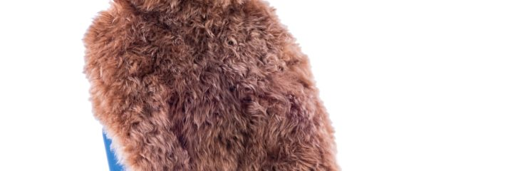 The 10 Best Sheepskin Seat Covers to Buy 2020